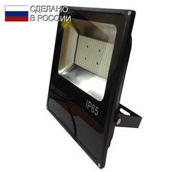 Светодиодный прожектор GLANZEN арт. FAD-0010-100